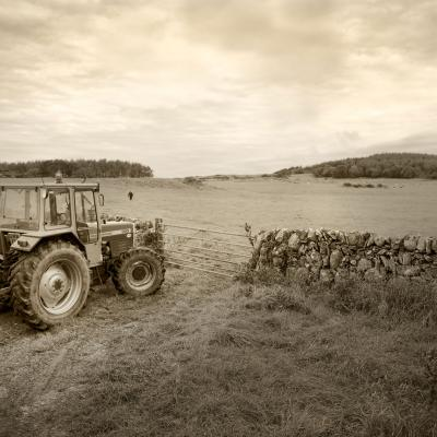 Tractor in field at the Ethical Dairy